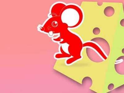 屬老鼠的性格 屬鼠人有哪些性格特點